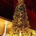 Photos: 東京タワーのクリスマスツリー。。。