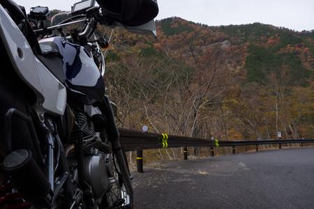 2012年秋のR309-5