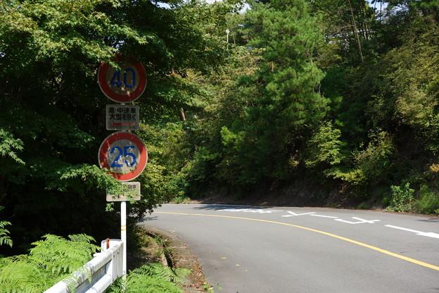Photos: 嵐山高雄パークウェイの40高中