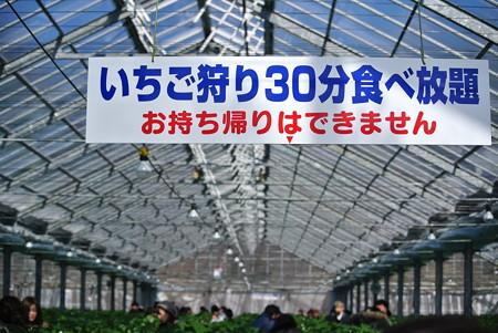 20130209_003