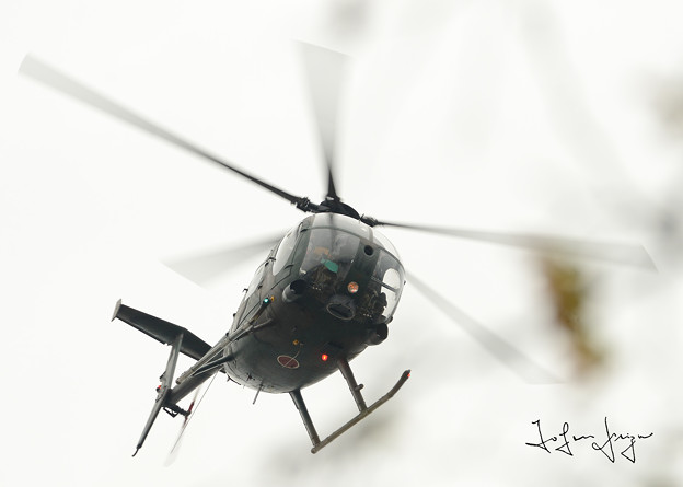 OH-6D2L
