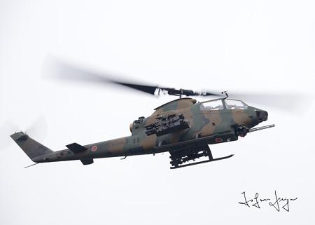 AH-1S1002L
