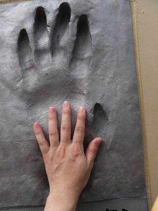とべ動物園で見た 手形