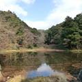 元日の猩々池