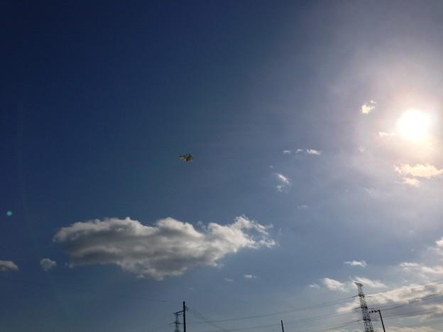 未確認飛行物体