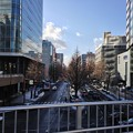 Photos: 広瀬通り