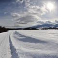 写真: 雪道