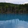写真: 蒼い池