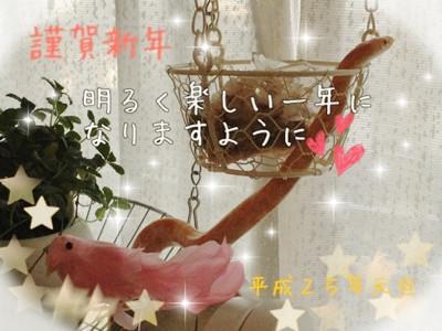 2013年賀状☆
