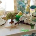 写真: 珊瑚と鳥コレクション