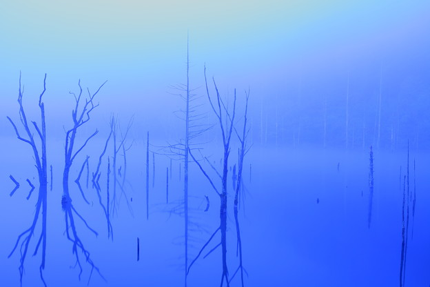 Photos: 静寂の時