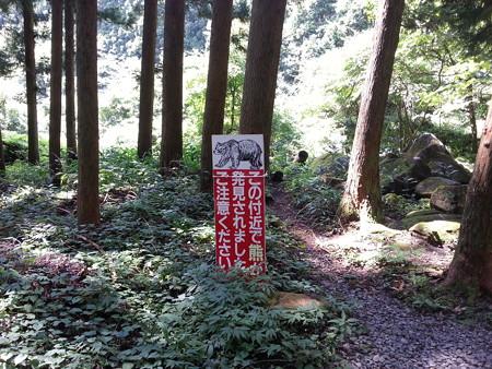 20130910_胴腹滝3