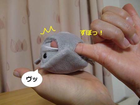 おみやげ4