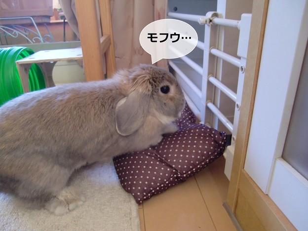 Photos: あ4