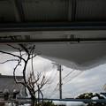 2014年2月_豪雪_横須賀_西地区_2月9日_7時b