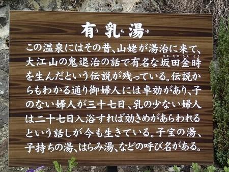 25 5 長野 田沢温泉 有乳湯 11