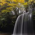 写真: 秋の鍋ヶ滝?♪