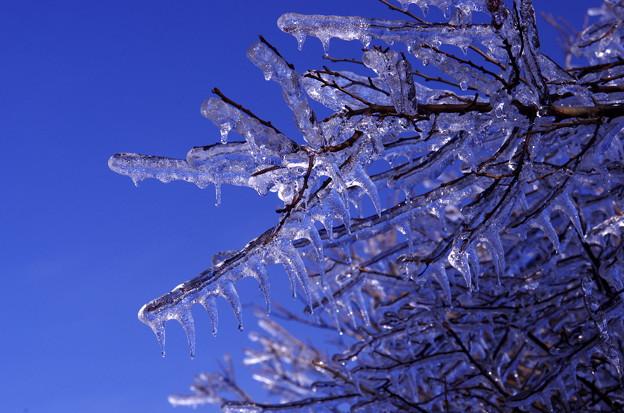 Photos: 冬の阿蘇?♪