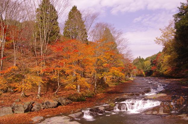遊水峡の紅葉♪