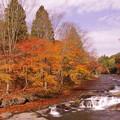 写真: 遊水峡の紅葉♪