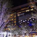 写真: JR博多シティのイルミネーション♪