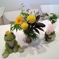 Photos: かえる花