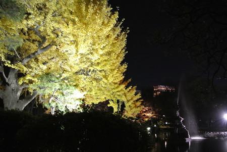 日比谷公園ライトアップ(2013-11-29-2)