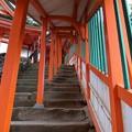 写真: 朱色の回廊