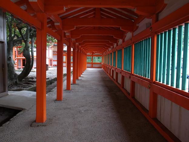 朱色の回廊