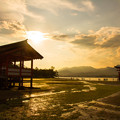 写真: 厳島神社の夕日(1)