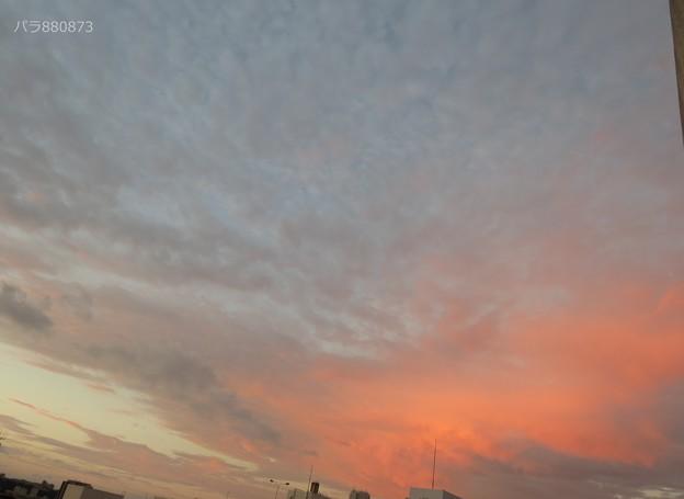 夜明け前の茜色が広がる空