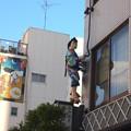 Photos: 屋根の上に・・・