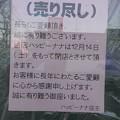 Photos: ハッピーナナ最後の日2