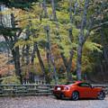 Photos: 赤い車