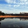 写真: 小松が池