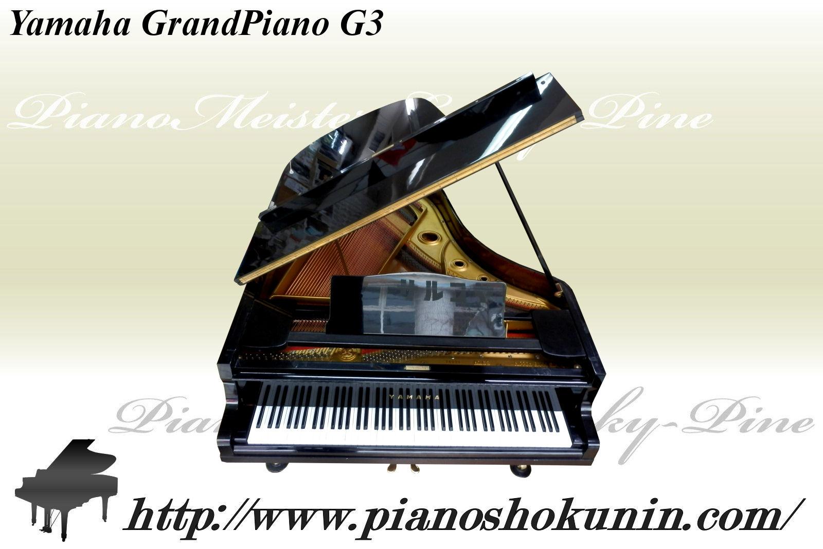 東北 被災ピアノ