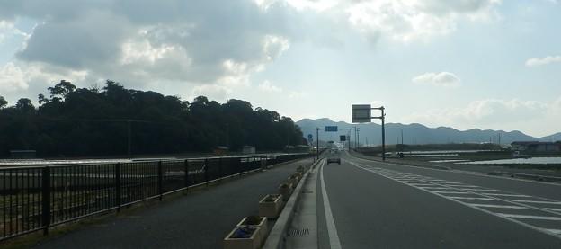 写真: 灘黒岩水仙郷11