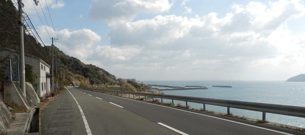 写真: 灘黒岩水仙郷17